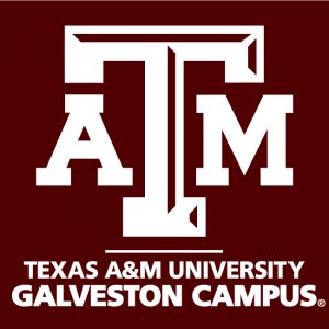 Texas A & M Galveston